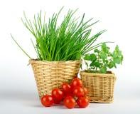 Cebolletas, tomate y orégano en cestas imagen de archivo libre de regalías