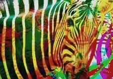 Cebra del arco iris Cebra colorida abstracta fotos de archivo