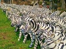 cebra del parque zoológico Fotos de archivo