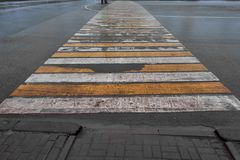 Cebra limpiada del paso de peatones en el asfalto mojado Fotografía de archivo