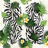 Cebra y hojas stock de ilustración