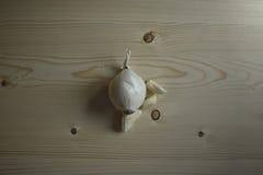 Cebula i czosnek Obrazy Royalty Free
