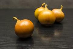 Cebula na stole z grupą trzy cebuli w backgroun Zdjęcie Royalty Free