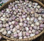 Cebula w ziele rynku Zdjęcie Royalty Free