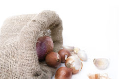 Cebule i czosnek w torbie Obraz Royalty Free