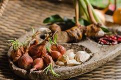 Cebule i garlics umieszczający na drewnianej tacy Obraz Stock