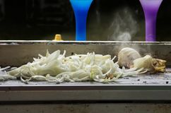 Cebule na grillu Obraz Stock
