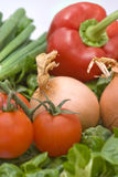 cebule pieprzą czerwonych pomidory Fotografia Stock