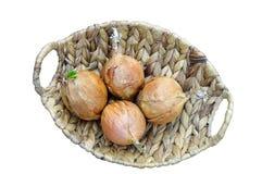 Cebule w koszu Zdjęcie Stock