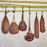 Cebule w rajstopy wiesza na drymbie Zdjęcia Stock