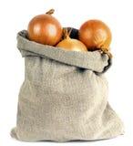 Cebule w torbie Zdjęcia Stock