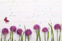 Cebulkowi kwiaty, confetti i motyl na drewnianym tle, do diabła zdjęcia stock