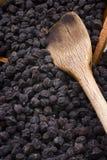 Cece nero del Murgia (Italia) Fotografie Stock Libere da Diritti