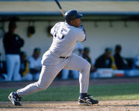 Cecil Fielder, New York Yankees Stock Photography