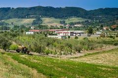 Cecina - Motorway från Rosignano Solvay till Livorno, Tuscany, Ita arkivfoton