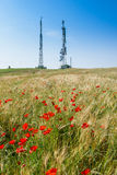 Cecina - Motorway from Rosignano Solvay to Livorno, Tuscany, Ita. Motorway from Rosignano Solvay to Livorno, Leghorn, Italy, poppies in a field royalty free stock photos