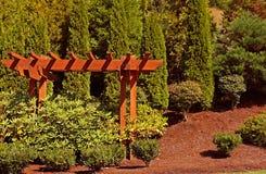Cedar Arbor. In a garden stock photography