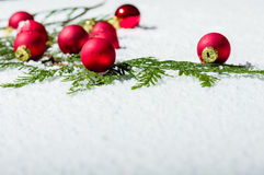 Cedar branch with red Christmas balls Royalty Free Stock Photo