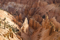 Cedar Breaks Monument Stock Image