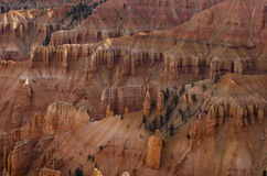 Cedar Breaks Monument Stock Photos