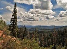 Cedar Breaks National Monument fotografia de stock royalty free