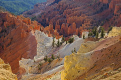 Cedar Breaks National Monument Royalty Free Stock Photos
