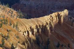 Cedar Breaks Royalty Free Stock Photo