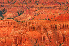 Cedar Breaks red cliffs Royalty Free Stock Images