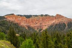 Cedar Breaks sceniskt drev Royaltyfria Foton