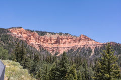 Cedar Breaks, Utah Photographie stock