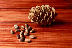 Cedar Cone et écrou Photographie stock libre de droits