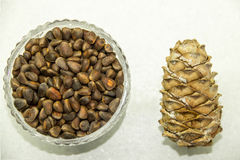 Cedar cone and nuts. In a glass vase stock image