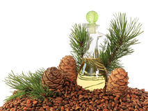 Cedar cones, nuts and cedar nut oil isolated on white background Royalty Free Stock Photo