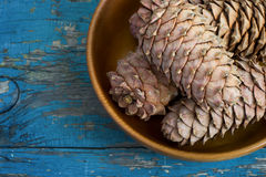 Cedar cones with pine nuts in a bowl Royalty Free Stock Image