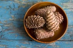 Cedar cones with pine nuts in a bowl Stock Photos