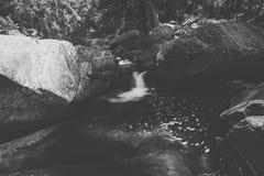 Cedar Creek en Samford, Queensland imagen de archivo libre de regalías