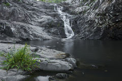 Cedar Creek Falls in Mount Tamborine Stock Image