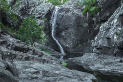 Cedar Creek Falls na montagem Tamborine Imagem de Stock Royalty Free