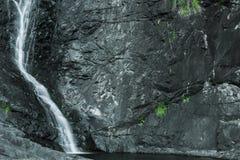 Cedar Creek Falls na montagem Tamborine Foto de Stock