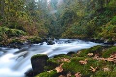Cedar Creek Falls. Cedar Creek near the Cedar Creek Grist Mill Stock Photo