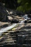 Cedar Creek i Samford, Queensland royaltyfri fotografi