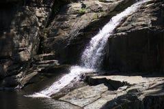 Cedar Creek i Samford, Queensland royaltyfria bilder