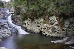 Cedar Creek Rock Pool Australia Royalty Free Stock Images