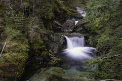 Cedar Creek Waterfall na área de Opal Creek Wilderness Fotografia de Stock