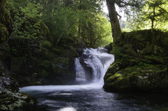 Cedar Creek Waterfalls Foto de Stock