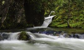 Cedar Creek Waterfalls Stock Photo