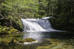 Cedar Creek Waterfalls Stock Images