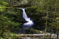 Cedar Creek Waterfalls Royalty Free Stock Photos