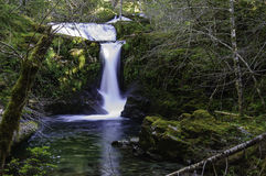 Cedar Creek Waterfalls Stock Photo