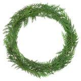 Cedar Cypress Wreath Stock Photo